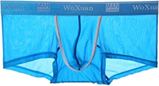 Lynn&Light Underwear Panties Knickers New Men Sexy Seamless Underwear Pants Boxershorts Male Mid-Rise Mesh Slips Homme Pan...