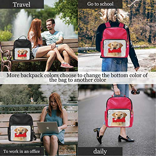 AB Dog and First Aid Kit,Leather Big Bag Best Travel ?for Women 13IN