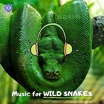 Music for Wild Snakes