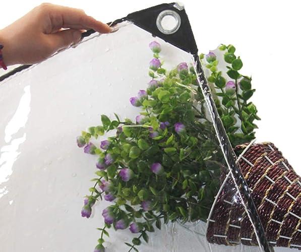 WDXJ Bache Claire épaisse de PVC de 0.5mm, couvertures extérieures de Feuille de Sol de bache d'isolation pour des récoltes Usine Toit Coupe-Vent , 420g   m2 (Taille   2×3 M)