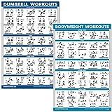 QuickFit Hanteltraining und Bodyweight Übungsposter Set – laminiertes 2 Diagramm-Set – Hantel-Übung Routine & Körpergewicht Workouts (45,7 x 68,6 cm)