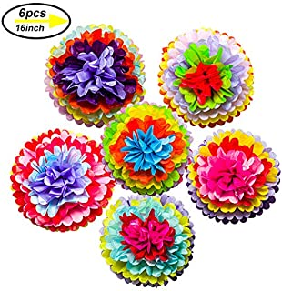 Mexican Fiesta Tissue Paper Pom Poms Flowers Rainbow Theme Party Supplies for Carnival Cinco De Mayo Wedding Birthday Decorations(6PCS)