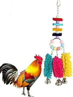 Chicken Toys for Hens with Natural Colorful Loofah Hanging Bells Chewing Toys