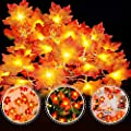 VIBOLA Maple LED String Lights, 20 Counts 10 FT Fairy String Lights, Battery Operated Decorative Christmas Tree Lights for Halloween, Indoor Outdoor, Bedroom Wall, Garden Wedding Party, New Year