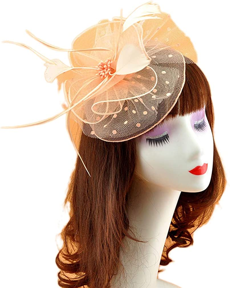 Ealafee Feather Fascinator Hats for Women Tea Party Wedding Headpieces Veil Hats