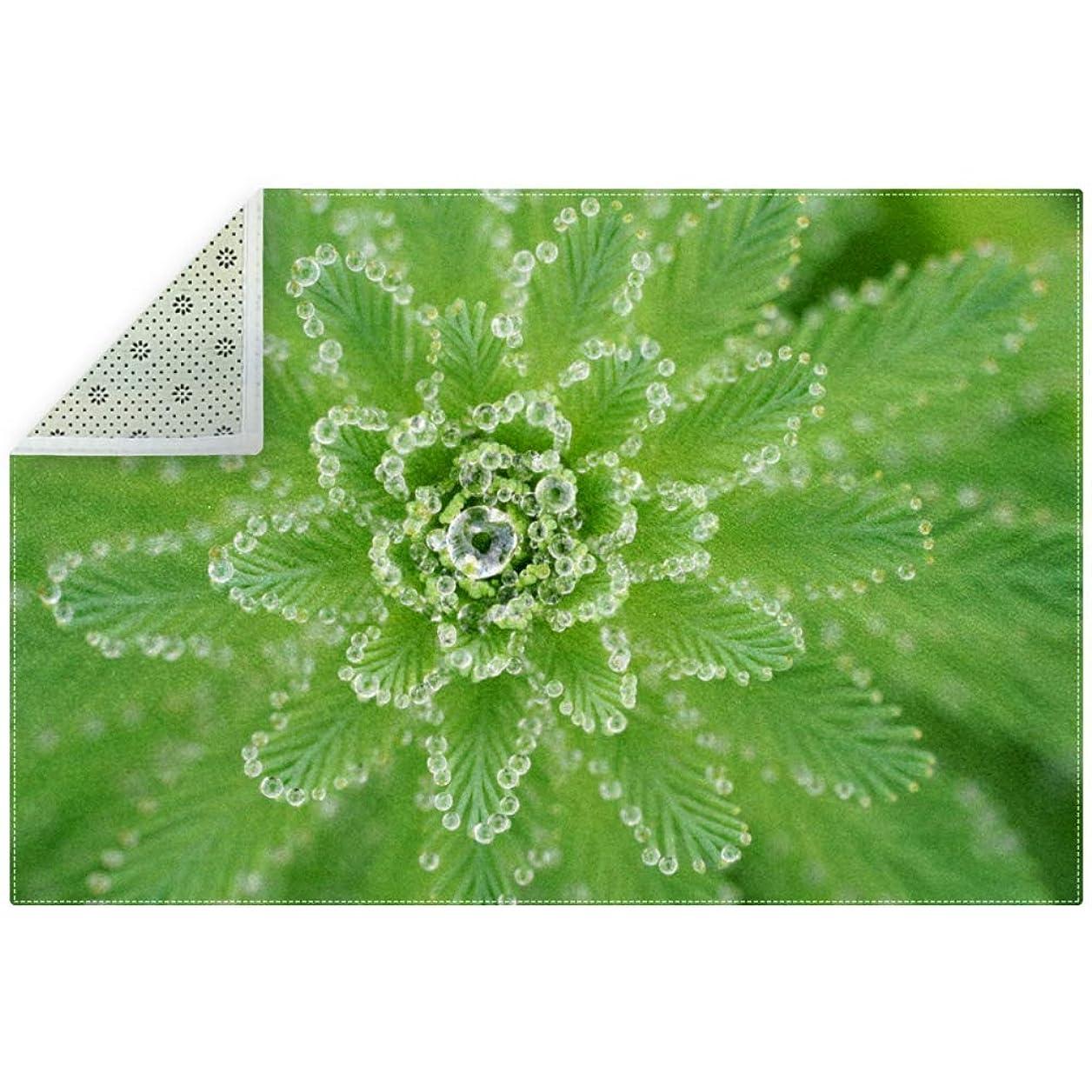要求する埋める満州AyuStyle ラグ カーペット ラグマット 露 緑 夏 植物 葉 草 絨毯 マイクロファイバー 滑り止め 洗える ウォッシャブル ホットカーペット対応 フロアマット 200×150cm