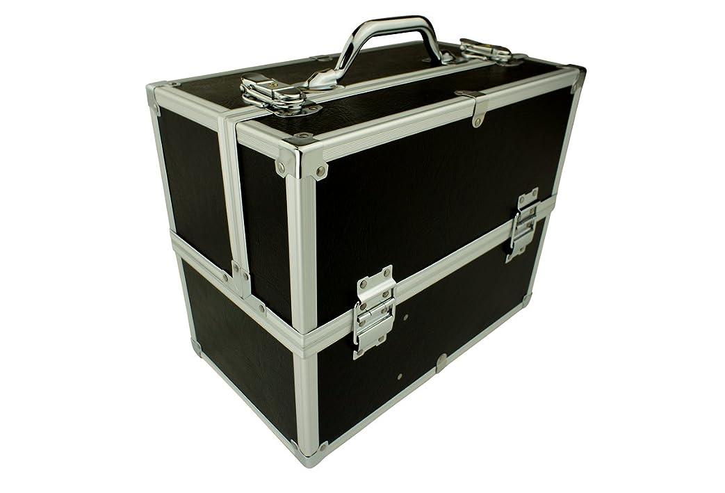 象アクセスマティスメイクボックス C2613BK-2 軽量タイプ コスメボックス 化粧箱 メイクアップボックス Make box MAKE UP BOX