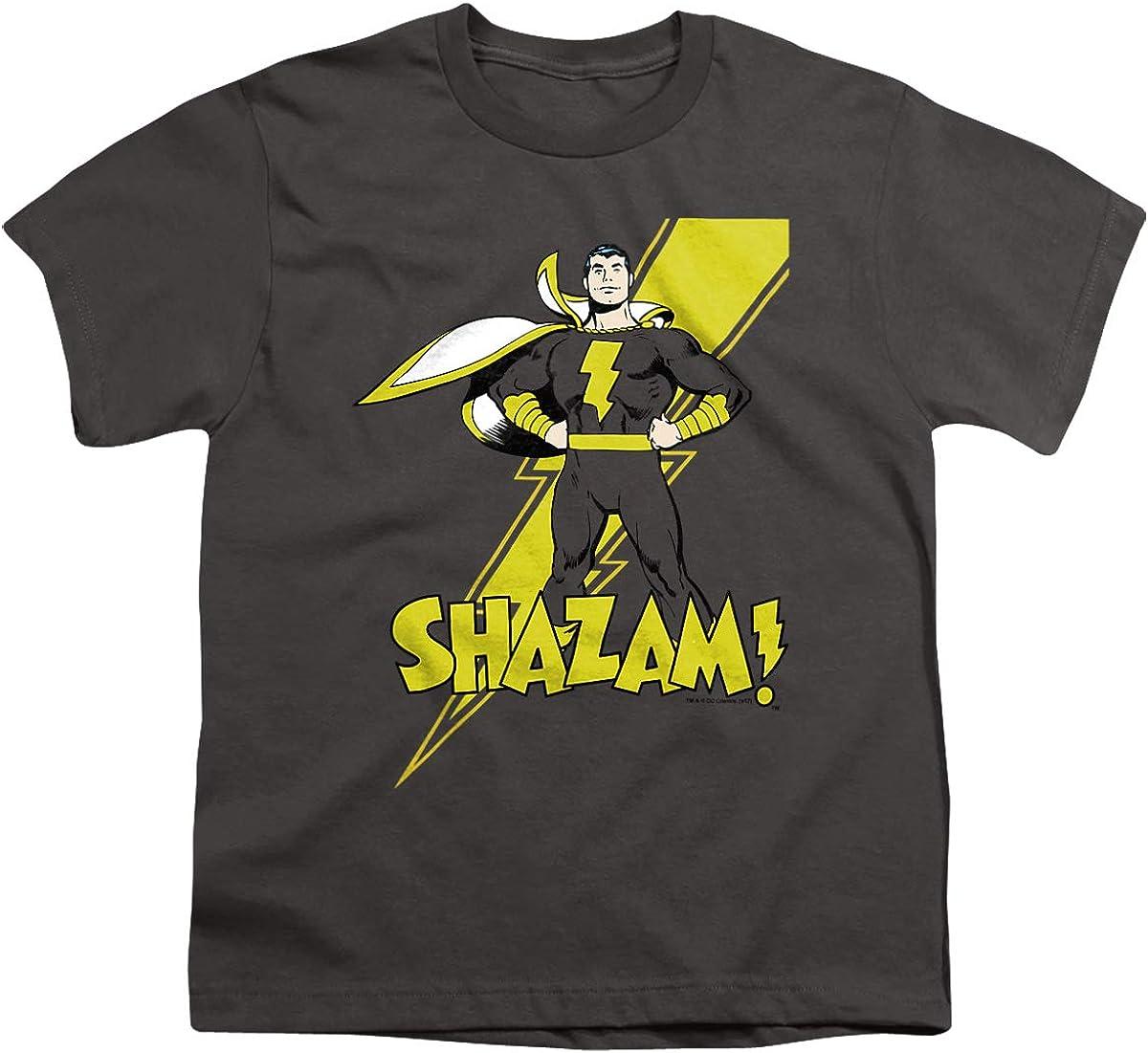 DC Shazam! Unisex Youth T Shirt, Charcoal, Medium
