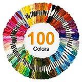 100 Skeins Embroidery Floss, Premium Multi-Color Embroidery Cross Stitch Threads for Cross Stitch kit, Handmade Craft and Friendship Bracelet String(6 Strands 8.75 Yard)