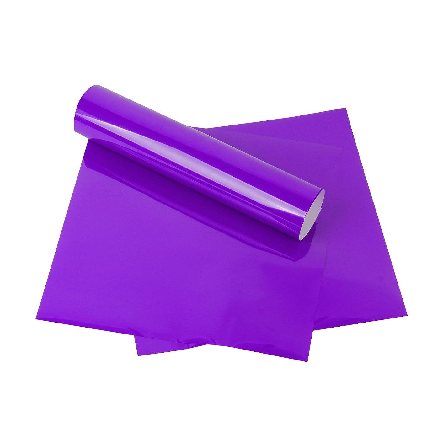 RUSPEPA Heat Transfer Vinyl HTV - Iron On for Silhouette Cameo & Cricut - HTV for Fabrics and Hats - 12x12Inch - 3sheet - Purple