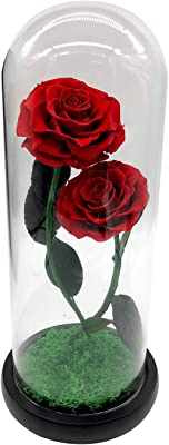 SUKIRIYA Real Preserved Rose Handmade Fresh Rose Eternal Rose Glass Dome Gift Box with Wooden Base (Double Roses)