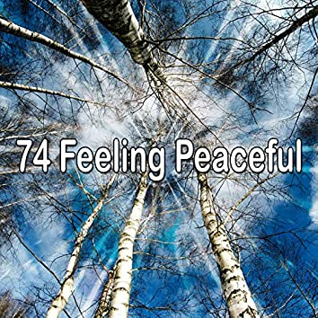 74 Feeling Peaceful