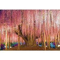 HiYash 8x6ftウィステリアトレリス日本の素晴らしい風景写真の背景旅行写真の背景パーティーイベントや家族写真に最適美しい背景とアートワーク