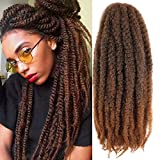 6 Packs Marley Twist Braiding Hair 24 Inch Marley Hair Crochet Braids Long Afro Kinky Synthetic Kanekalon Fiber Marley Hair For Twists Braiding Hair Extensions (24inch, T30)