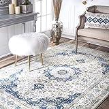 nuLOOM Paisley Verona Vintage Persian Area Rug, 5' x 7' 5', Blue