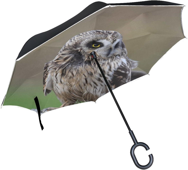 Animal Owl ShortEared Blackbeauty Jumping Adorable Adorable Fluffy Small Ingreened Umbrella Large Double Layer Outdoor Rain Sun Car Reversible Umbrella