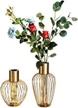 Flower Bottle Transparent Glass Test Tube Hydroponic Plant Vase Candlestick (Set of 2 Pieces with Dried Flowers)