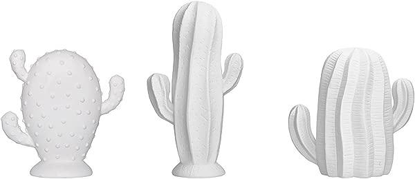 Stoneware Cactus Matte White 3 Styles