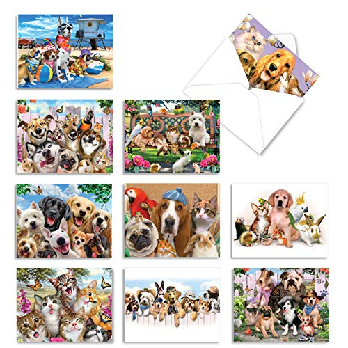The Best Card Company - 10 Blank Animal Cards Boxed (4 x 5.12 Inch) - Assorted Pets, Zoo, Wildlife Cards for Kids - Off The Leash M6641OCB