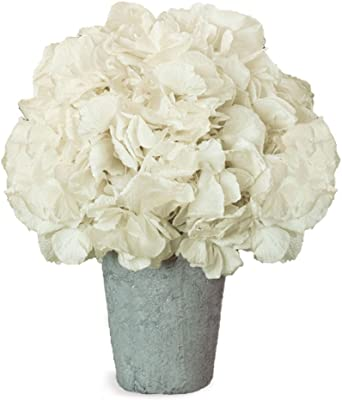 Porch & Petal Hydrangea in Pot, Large, 2 Piece