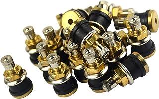 figatia Adaptador de extensão de válvula de pneu automático de latão 20x, extensor de haste de ar