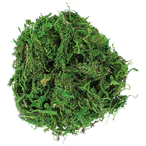 VOSAREA 3 Paquetes de simulación Artificial de Musgo Verde Falso Musgo para Plantas Patio jardín decoración del hogar ✅