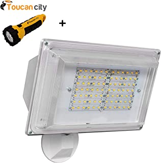 Toucan City LED Flashlight and Amax Lighting 180 Degree White Outdoor Integrated LED Wall Pack Light LED-SL42WT