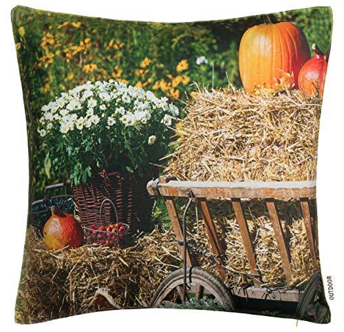 Brandsseller Outdoor Garten Kissen Dekokissen Motivkissen Herbst Schmutz und Wasserabweisend mit Reißverschluss 45 x 45 cm - Motiv 6