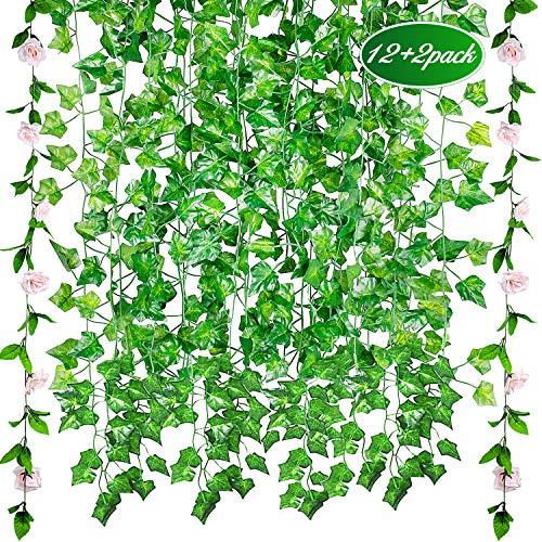 GVOO Plantas