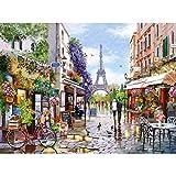 Castorland Puzzle 3000 pièces : Paris Fleuris