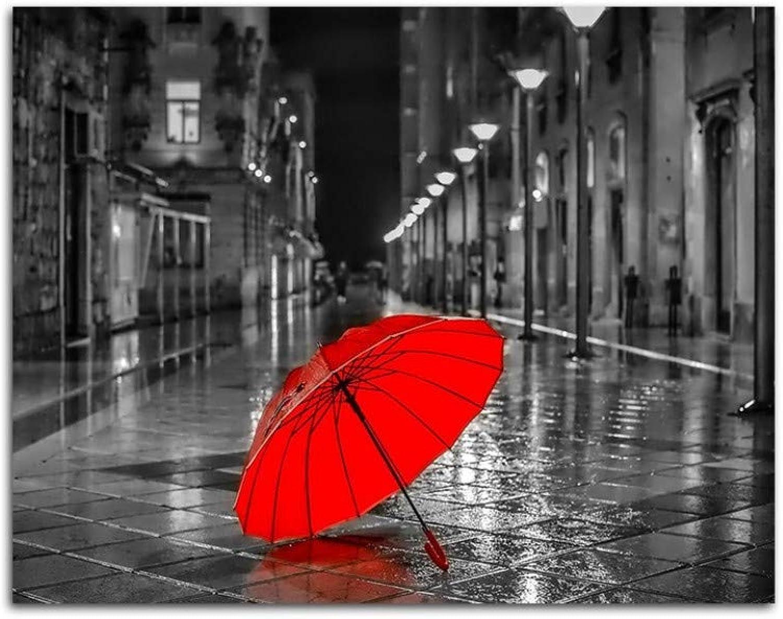 Aolala Un Street rot Umbrella Schwarzweiss-Malerei nach Zahlen Realistische Street View-Färbung nach Zahlen, Rahmenlos, 60x75cm B07PNBD8SY | Stabile Qualität