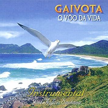 Gaivota, o Vôo da Vida (Instrumental)