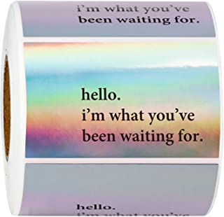 WRAPAHOLIC Hello I'm What You've Been Waiting for Stickers - Black Ink Holographic Silver Business Thank You Stickers, Shi...