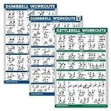 Palace Learning 3er Pack: Hanteltraining Poster Volume 1 & 2 + Kettlebell-Übungen – Set mit 3 Workout-Diagrammen (laminiert, 45,7 x 68,6 cm)