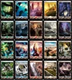 MTG Zendikar 20 FULL ART Land Set MINT
