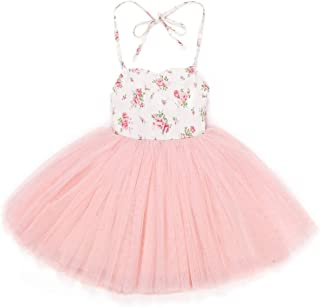 Flofallzique Pink Baby Girls Dress Tulle Tutu Birthday Special Occasion Toddler Dress