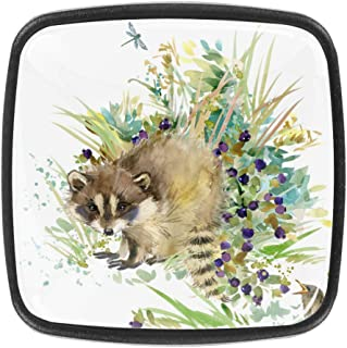 Raccoon Forest Animals - Juego de 4 pomos para armario cajón cajones tiradores para aparador armario estantería dise...