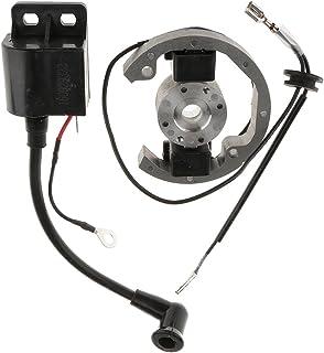 gazechimp Bobina De Encendido Del Rotor Del Estator Kit Para Ktm 50 Sx / 10 Ktm 50 Sx Aventura Senior