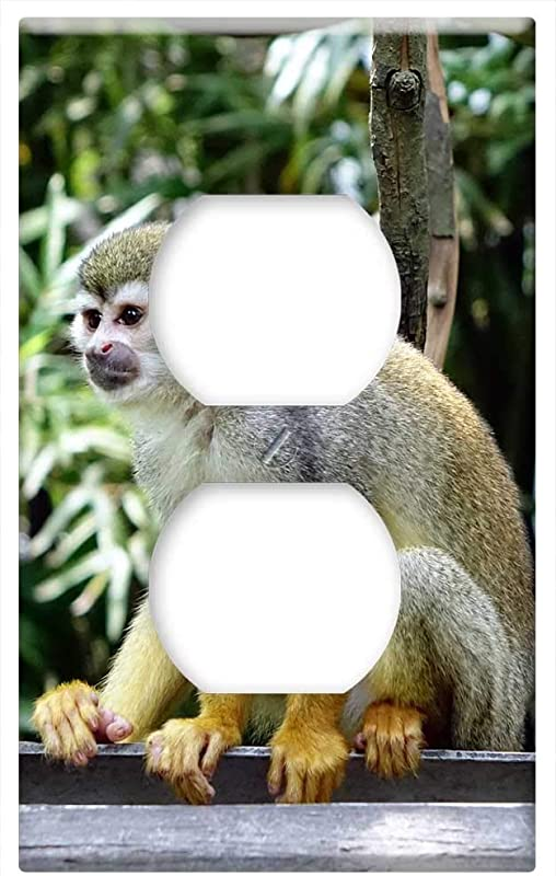 Switch Plate Outlet Cover Squirrel Monkey Monkey Climb Feeding Zoo Nature