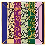 Pirastro 349030 PASSIONE Bass (Orchestra) Set, strong