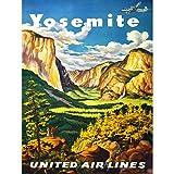 Bumblebeaver TRAVEL Yosemite United Airlines California USA
