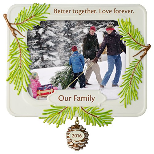 Hallmark Keepsake 2016 'Our Family,  Better Together' Dated Picture Frame Holiday Ornament