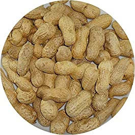 MONKEY NUTS – NUTS IN SHELLS – PARROTS – SQUIRRELS – BADGERS – 1 KG