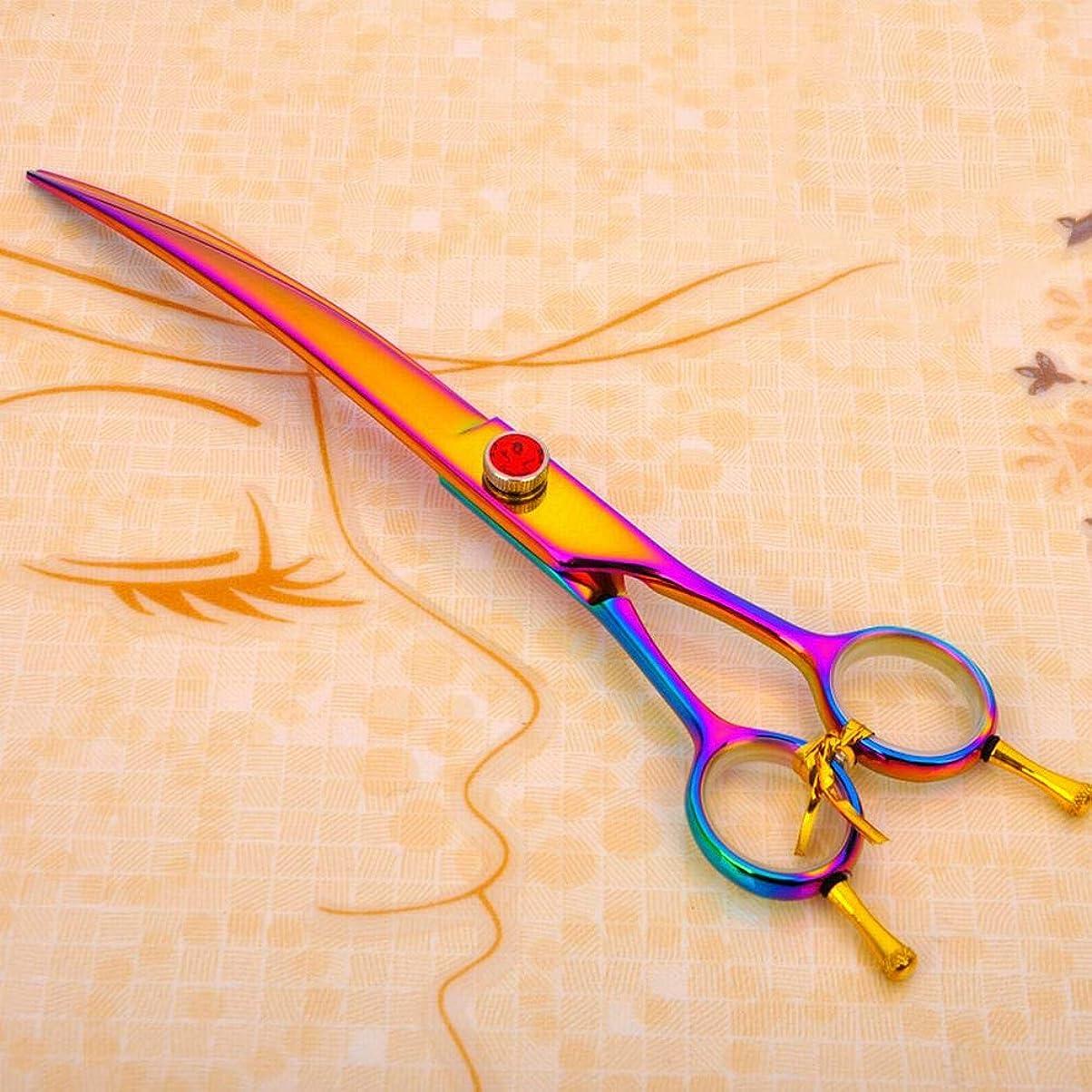 理容室リットルハウジング8.0インチの両側曲げ鋏、ペットグルーミングはさみ、曲げはさみ、ヘアカットはさみ モデリングツール (色 : 色)