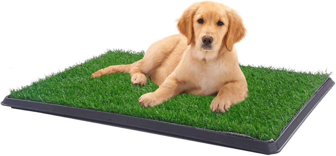 Indoor Outdoor Shipping included Turf Potty Pads for Fake Max 67% OFF Pee Puppy Training Dogs
