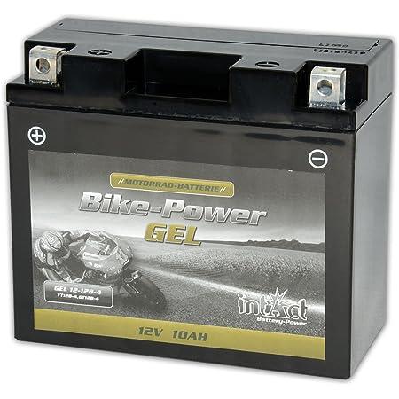 Intact Motorrad Batterie Gel 12 V 10 Ah Gt12b 4 51299 Passend Für Li 12 12b 4 Yt12bbs 51001 51015 Ct12l B 512901019 Yt12b 4 Yt12b Bs 0092m60190 M6019 00972512p1 F12 12b Wp12b 4 Kt12b 4 51299 51201 Ct12b 4 Auto