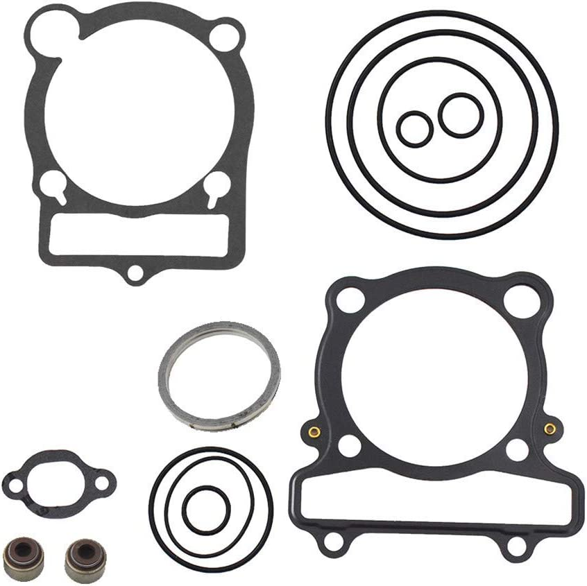 ALL-CARB Top End Head Gasket Kit Set Warrior 350 for Max 44% OFF Our shop OFFers the best service Yamaha Rapt