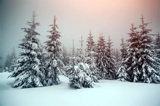 6x4ft Snow Forest Backdrop Snowcovered Pine Trees Freeze Way Path Winter Landscape Photography Background Merry Christmas Happy New Year Trip Vinyl Photo Studio Drape Wallpaper