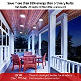 Photo #3: Motion Sensor Light Bulb by Sengled With Waterproof 5000K 1050LM And Outdoor LED Light Bulbs 4 Pack