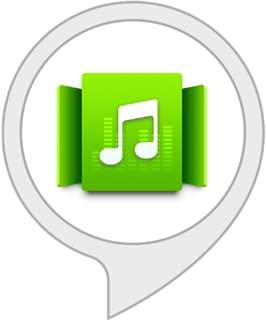 alexa audio station skill